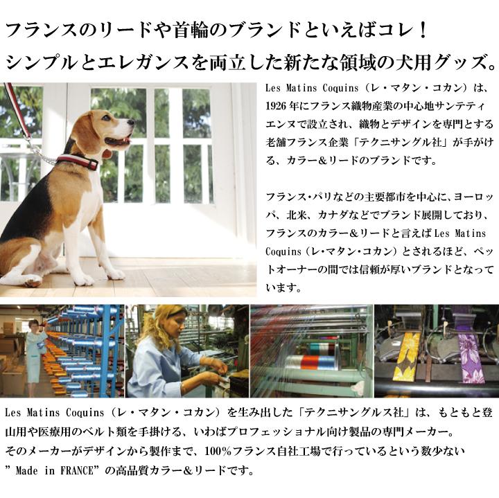 フランスのリードや首輪のブランドといえばコレ!シンプルとエレガンスを両立した新たな領域の犬用グッズ