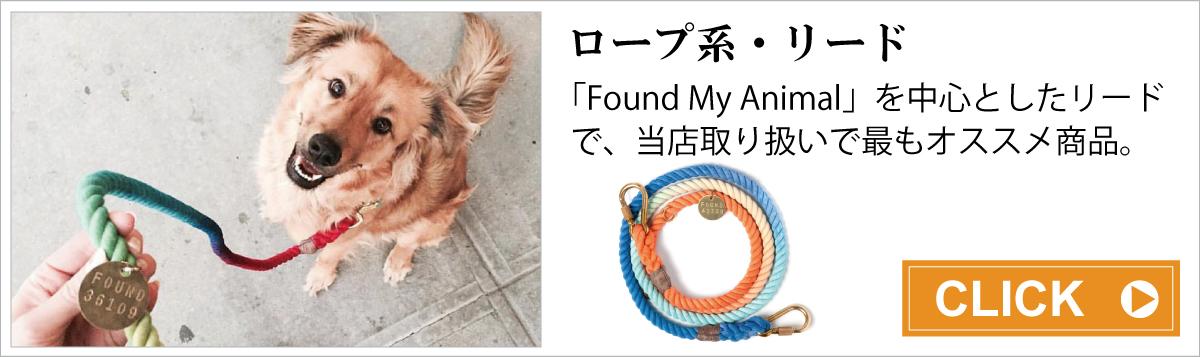 ロープ系・リード