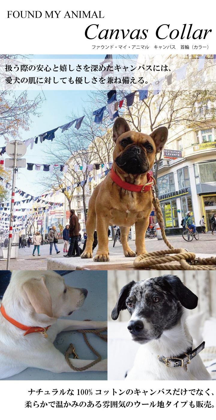 ファウンド・マイ・アニマル キャンバス 首輪(カラー)。扱う際の安心と嬉しさを深めたキャンバスには、愛犬の肌に対しても優しさを兼ね備える。ナチュラルな100%コットンのキャンバスだけでなく、柔らかで温かみのある雰囲気のウール地タイプも販売。