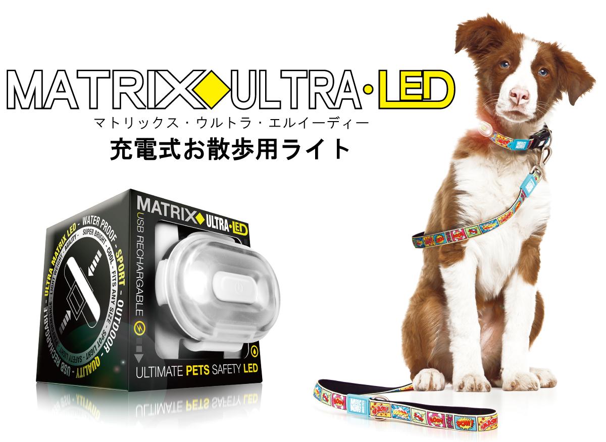 充電式お散歩用ライト