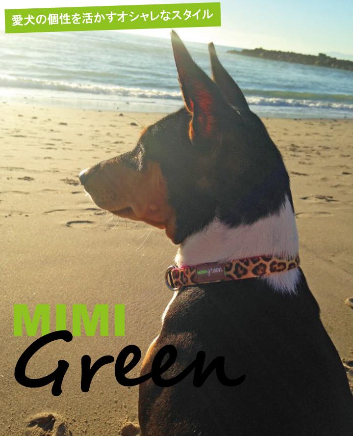 愛犬の個性を活かすオシャレなスタイル Mimi Green ミミ・グリーン